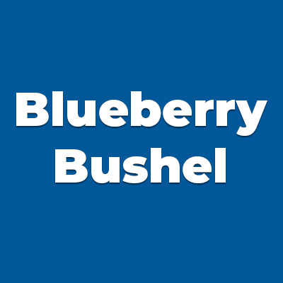 Colors BLUEBERRY BUSHEL