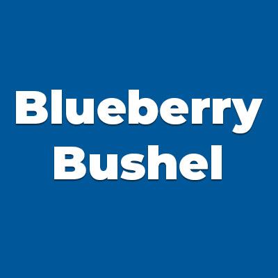 Colors BLUEBERRY BUSHEL